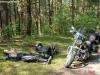 krotki-odpoczynek-w-polskim-lesie